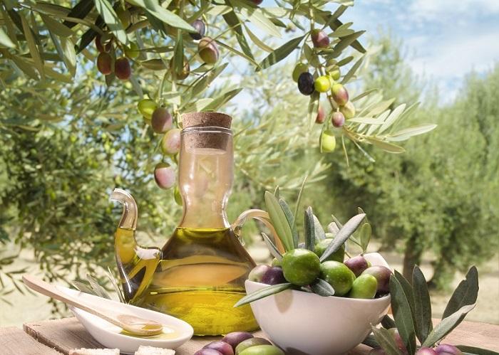 Zeytin ve zeytinyağı sektörü sorunlarını Aydın'da masaya yatırıyor | Yağ  Gıda, Tarım, Beslenme, Tarım Haberleri, Sağlıklı Beslenme, GDO, Beslenme ve  Kanser