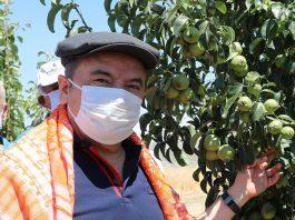 Antalya Büyükşehir Belediye Başkanı Muhittin Böcek